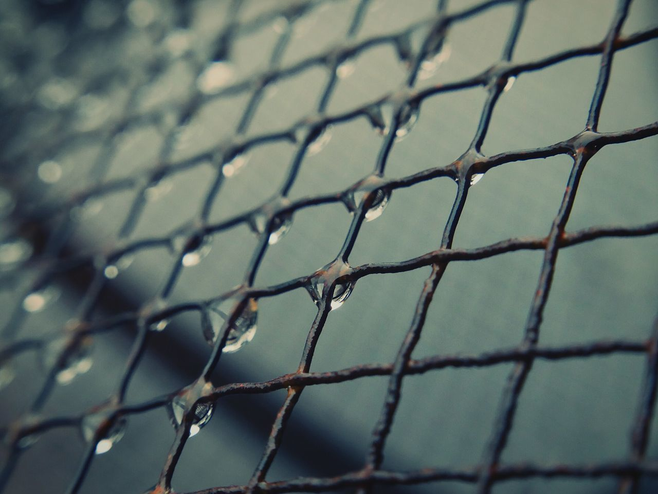 Pattern Close-up Separation Outdoors Backgrounds Dew Drop RainDrop Textures And Surfaces Abstract Lines Rain Grid Mesh Wire Aged Metal