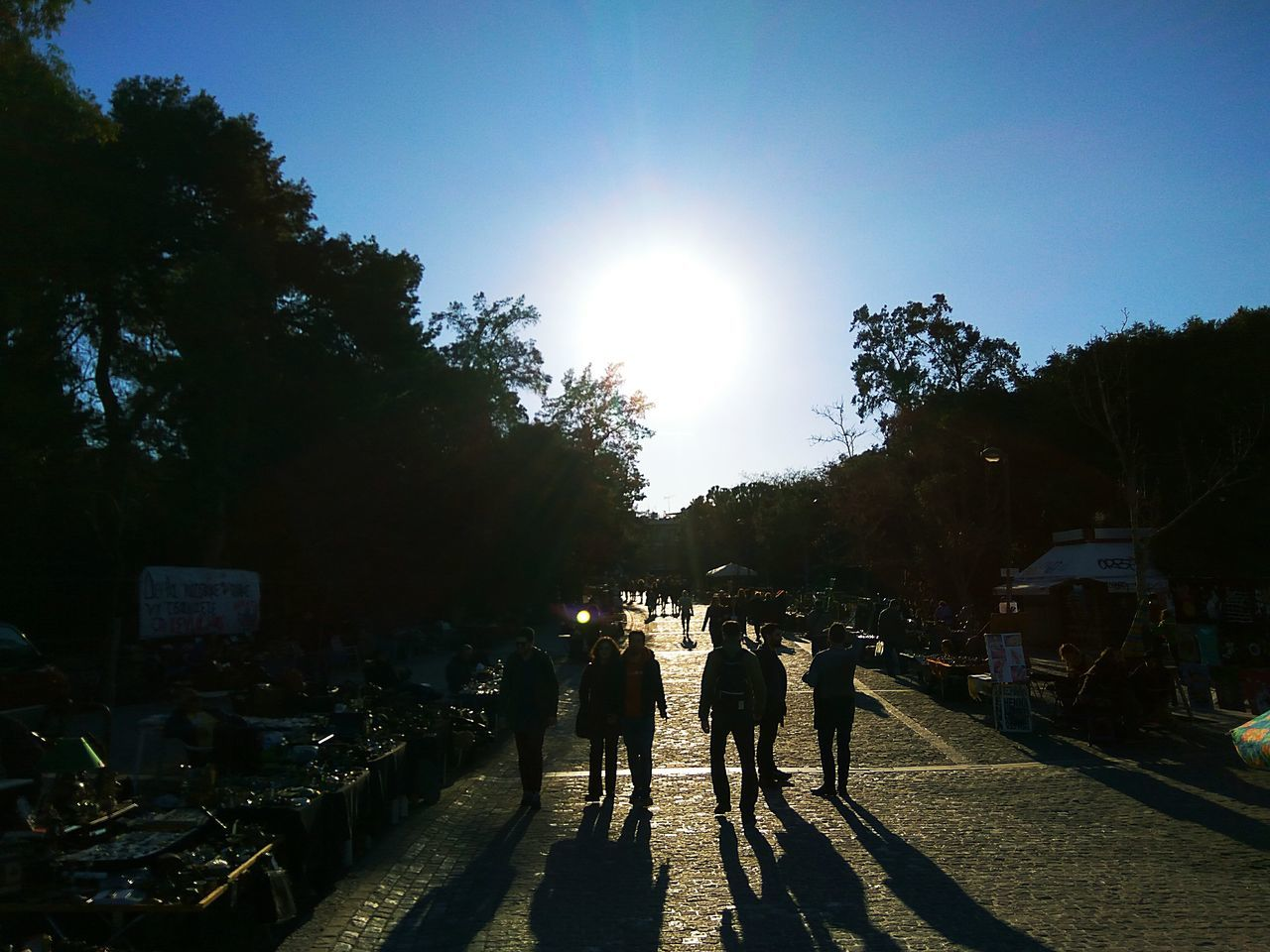 sunlight, real people, sunbeam, tree, large group of people, sun, walking, rear view, women, leisure activity, men, day, sky, outdoors, lifestyles, standing, nature, togetherness, people