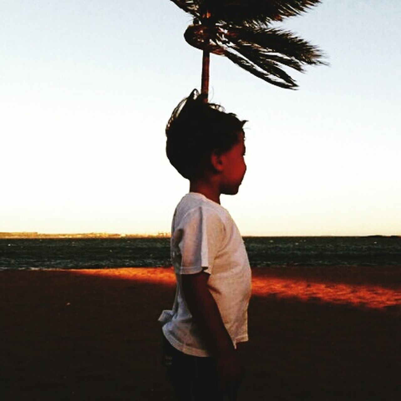 childhood, one person, boys, one boy only, child, casual clothing, children only, side view, males, standing, elementary age, outdoors, sunset, sky, full length, real people, only boys, day, people, clear sky, tree, nature, adult