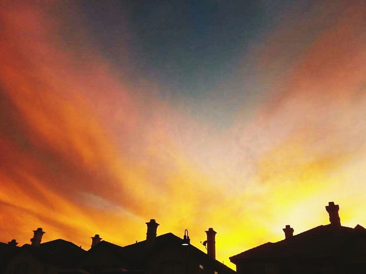 Sunset Silhouettes Yellow Sky Brilliant Colors Composition Silhouette California View From My Backdoor Sunset_collection Sunset House Top Lamp Post Extreme Sunsets Red Sky San Diego Beautiful Nature_collection EyeEm Nature Lover Nature Extreme Sky Sky_collection Colors
