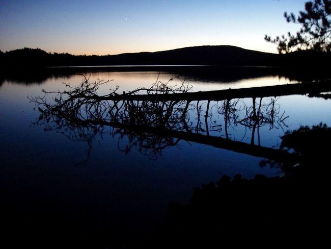 Algonquin Algonquin Park Algonquinprovincialpark Lake Outdoors Reflection Scenic Landscapes Scenicphotography Scenicsunset Silhouette Sky Sunset Silhouettes Tranquil Scene Tranquility Tree Water