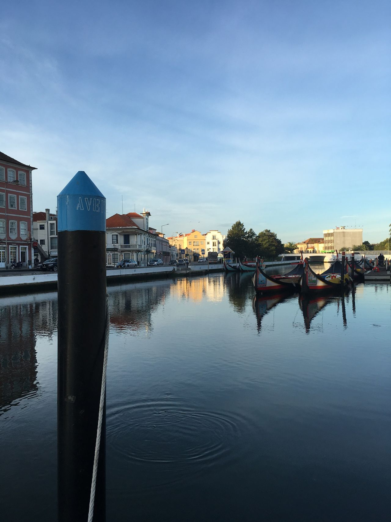 Last day in Aveiro Autumn Lights Tranquility Before Work Beauty In Nature Morning Light Relaxing Moments Ria De Aveiro Reflection Water Reflections Water Mirror NoEditNoFilter