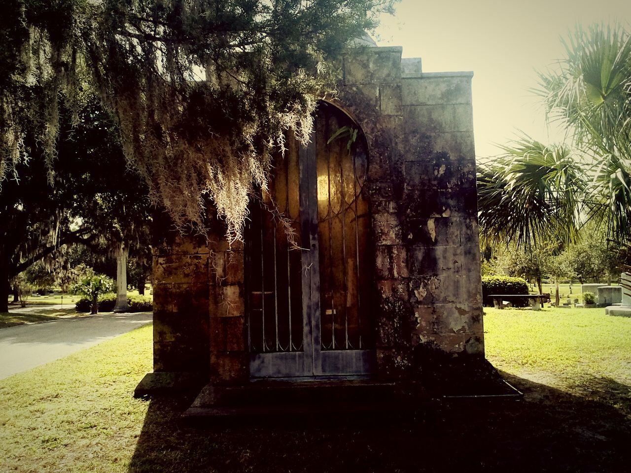 Cemetery Tomb Tree Sunlight No People Outdoors Built Structure Nature Day Architecture Growth Sky