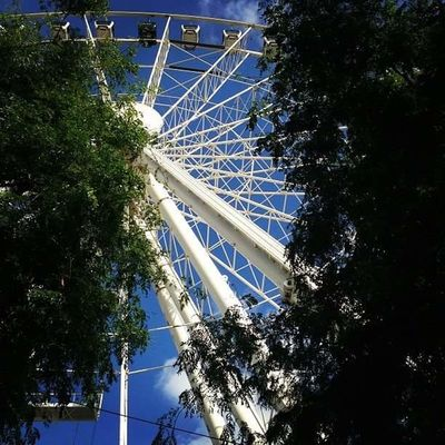 Manchester UK Wheel Amusement Park Architecture Arts Culture And Entertainment Blue Branch Built Structure Day Growth Low Angle View Nature No People Outdoors Sky Tree Wheel Of Manchester