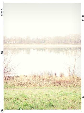 Winter Morning am Rheinufer Highkey