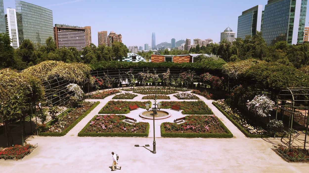 Rose garden in Santiago, Chile Ben Built Structure Cityscape Clear Sky Growth Modern Nature Park - Man Made Space Red Rose Roses Garden Of Rome Roses🌹 Tree White Rose Yellow Roses