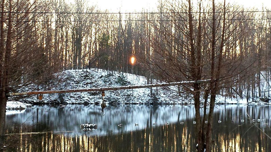 Tranquility Scenics Snowy Morning Pond Reflections Frozen Nature Frozen Pond Beauty In Nature Sunrise Reflection Frozen Sunrise