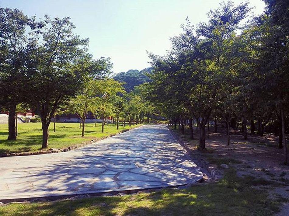 범어사 부산 Temple Nature Busan KoreaTour Korea Street