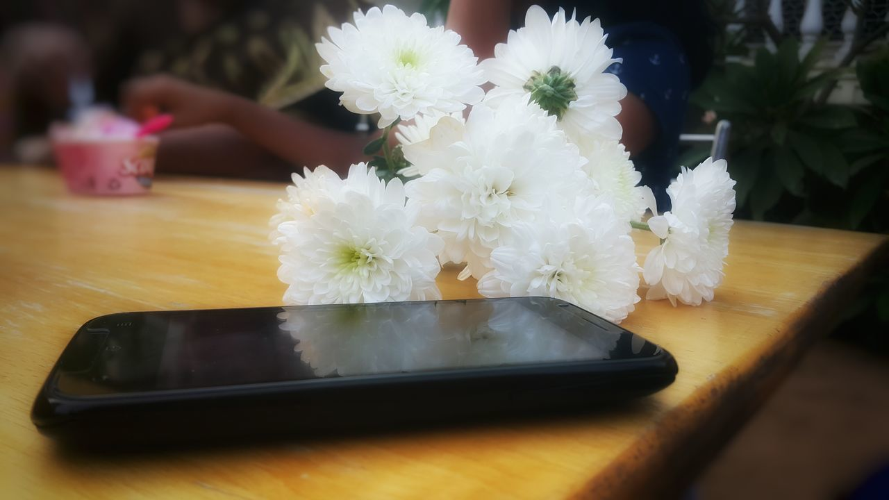 table, food and drink, indoors, flower, freshness, communication, real people, food, wireless technology, close-up, bride, day, human hand, people