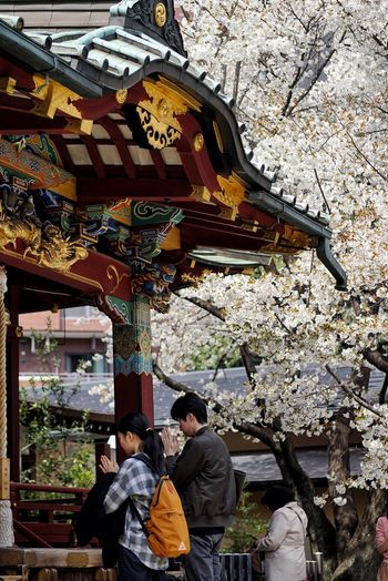 Real People Built Structure Architecture Two People Place Of Worship Women Outdoors Men Day People Adult Adults Only Young Adult Eye4photography  EyeEm Best Shots Brilliant Colors Brilliant Sakura Cherry Blossoms April Street Photography Shrine Streetphotography Noon Pray