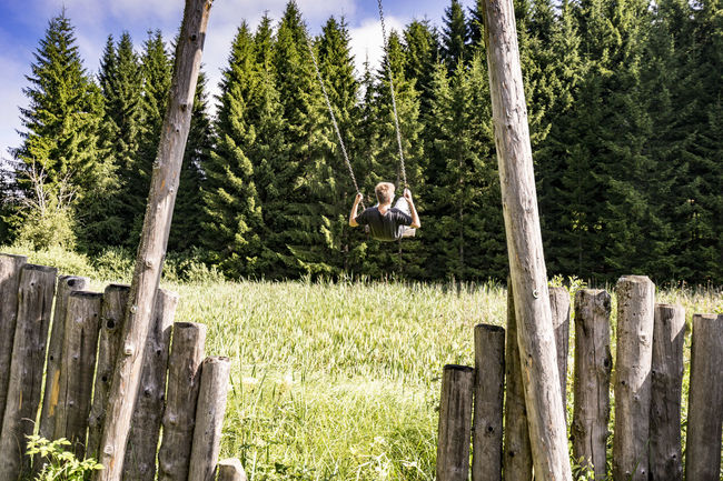 young and free Beauty In Nature Forest Grass Green Color Nature Non-urban Scene Outdoors Young And Free