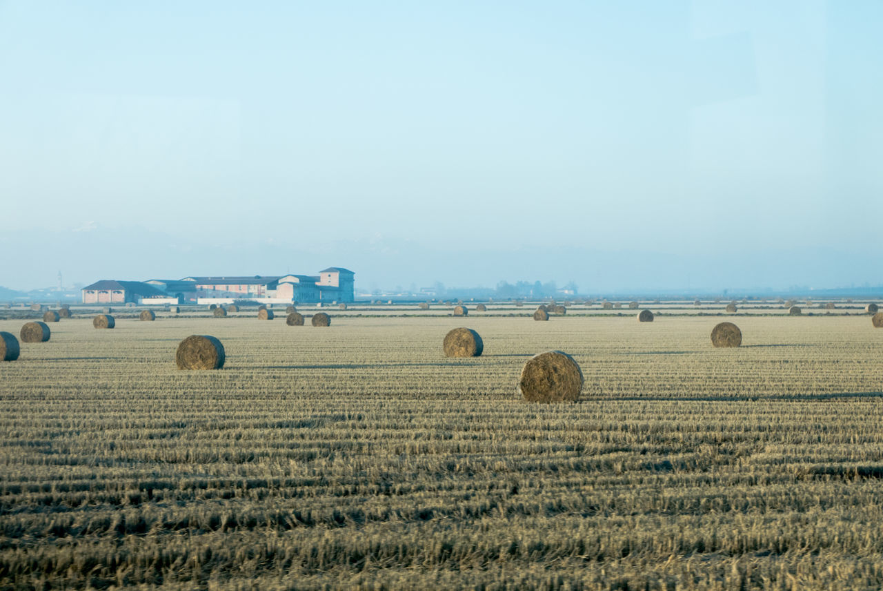 bale, field, agriculture, hay bale, farm, rural scene, hay, landscape, nature, tranquility, no people, day, blue, outdoors, beauty in nature, sky