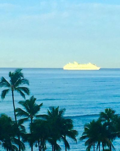 Pacific Ocean View Horizon Over Water Scenics Palm Tree Sky Beach Water Tree No People Blue Clear Sky Ship Hawaii Lost In The Landscape Second Acts Island Of Oahu, Hawaii Oahu, Hawaii Oahu Tropical Tropics Perspectives On Nature Ocean Ocean View Pacific Oahu / Hawaii An Eye For Travel