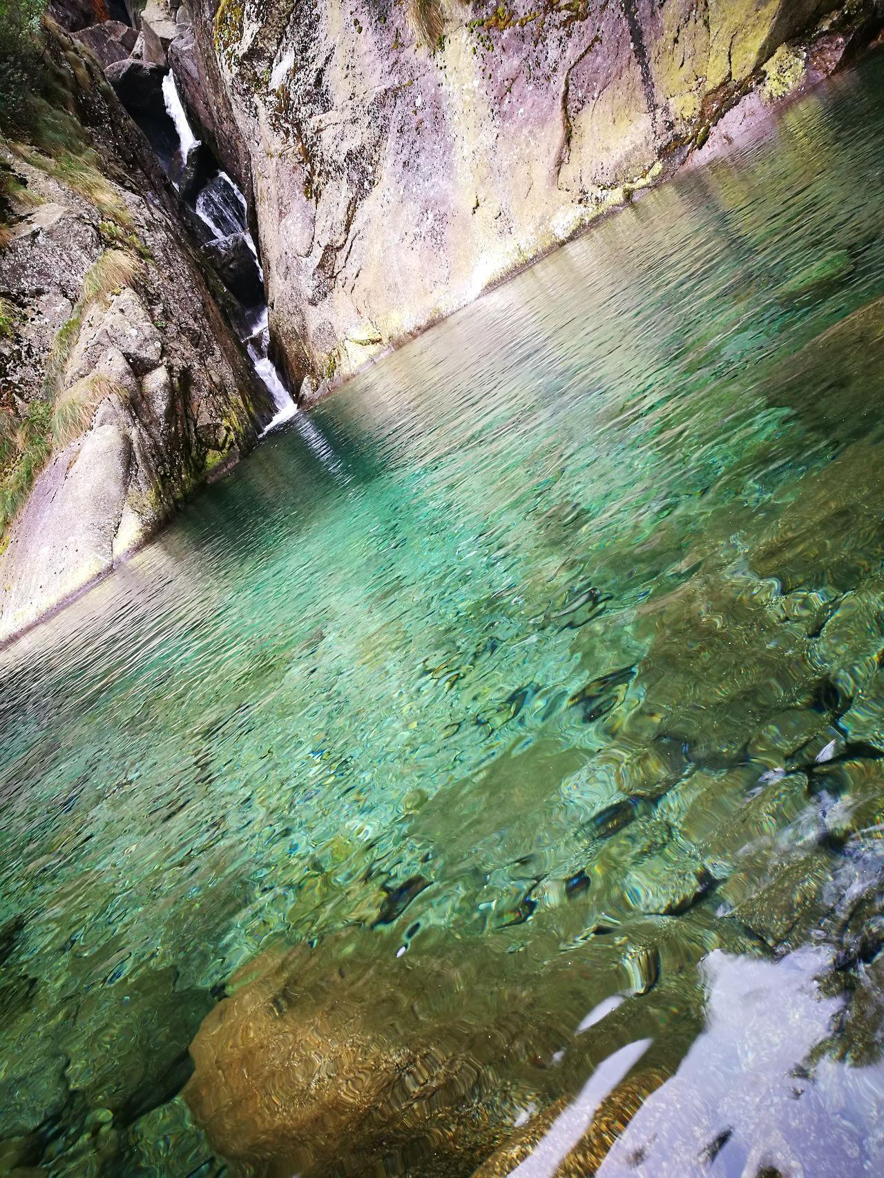 La goj di lasinetto Tranquility Water Reflection Nature
