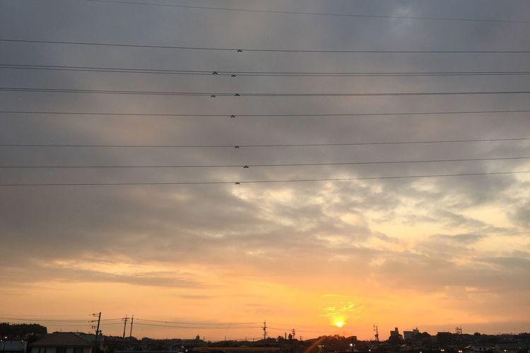 夕陽 夕焼け Sunset 空 Sky 雲 Clouds 電線 Electric Wires