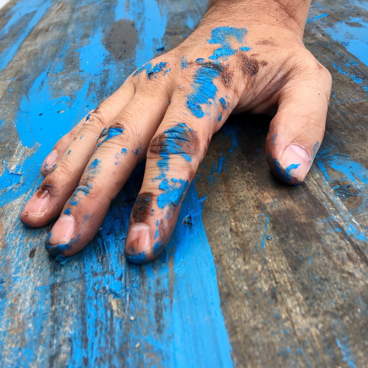 Wood - Material Human Body Part Human Hand Blue Holi Day One Person Outdoors People Close-up Powder Paint One Man Only Adults Only Adult Only Men Talcum Powder Brush Craft Colors Paint Textured