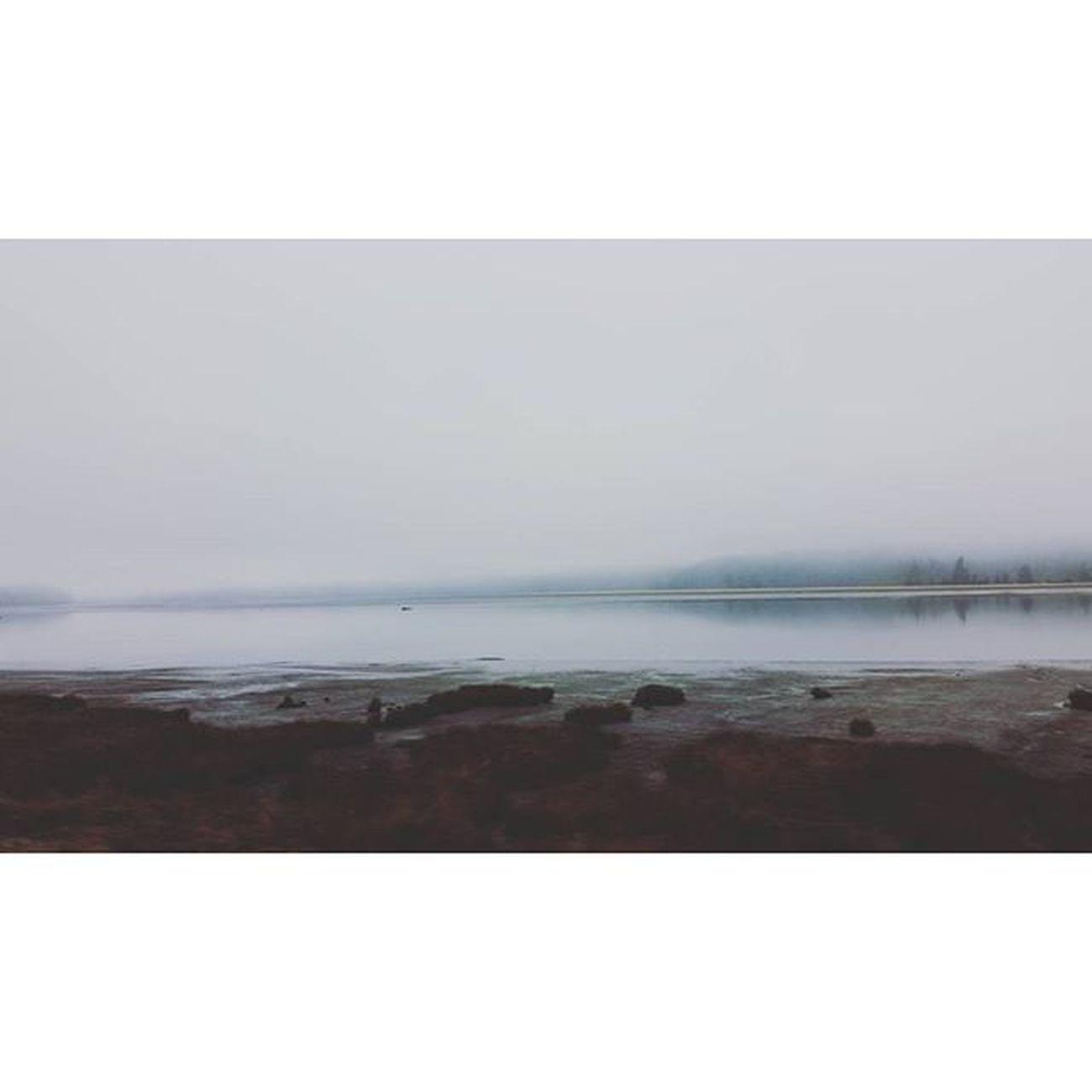 Foggyfallmornings