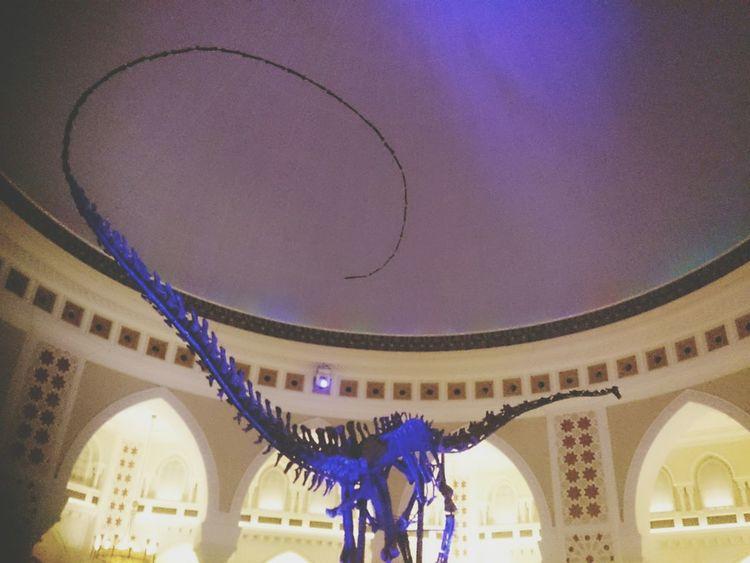 Hz339 I Was There Danassour Danasaur Past Time The Mall Dubai❤ Dubai City Of Art Dubai Mall