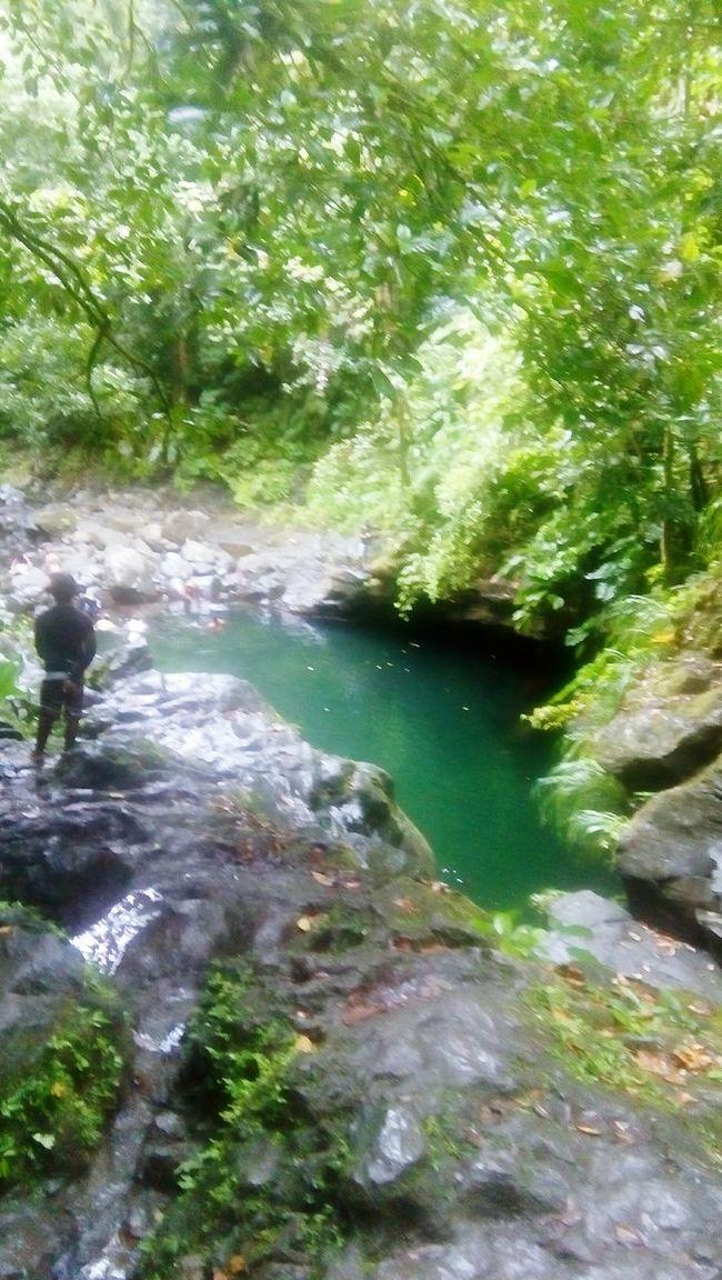 BassinParadize, River, CapesrerreBelleEau, Guadeloupe