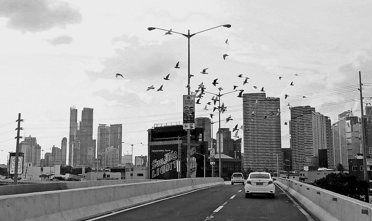architecture, city, building exterior, built structure, skyscraper, car, sky, transportation, flying, land vehicle, mode of transport, road, outdoors, day, travel destinations, bird, modern, animal themes, no people, urban skyline, cityscape