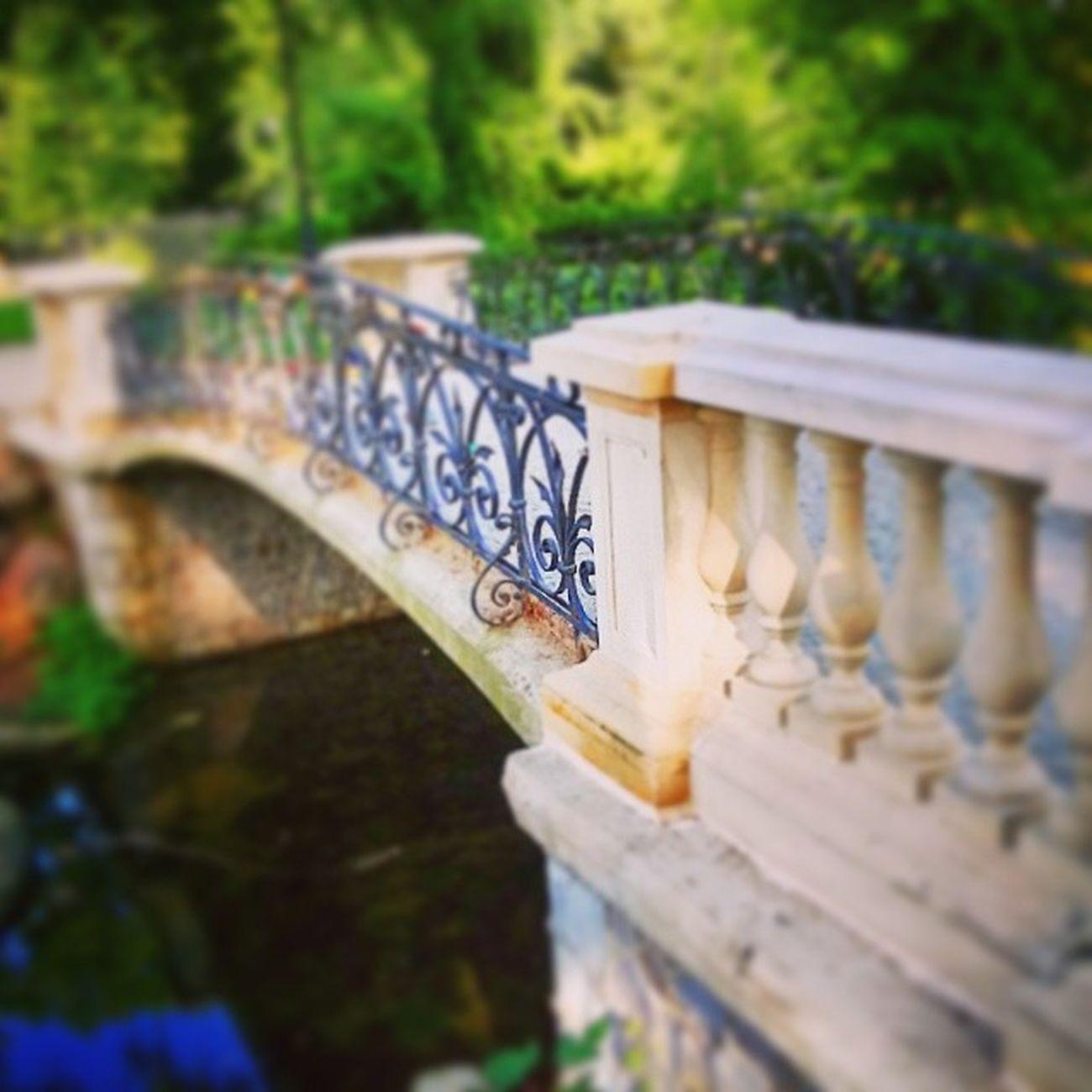 Warszawa  Warsaw Stolica Lazienki krolewskie park most spacer walk zwiedzamywarszawe cudzechwalicieswojegonieznacie