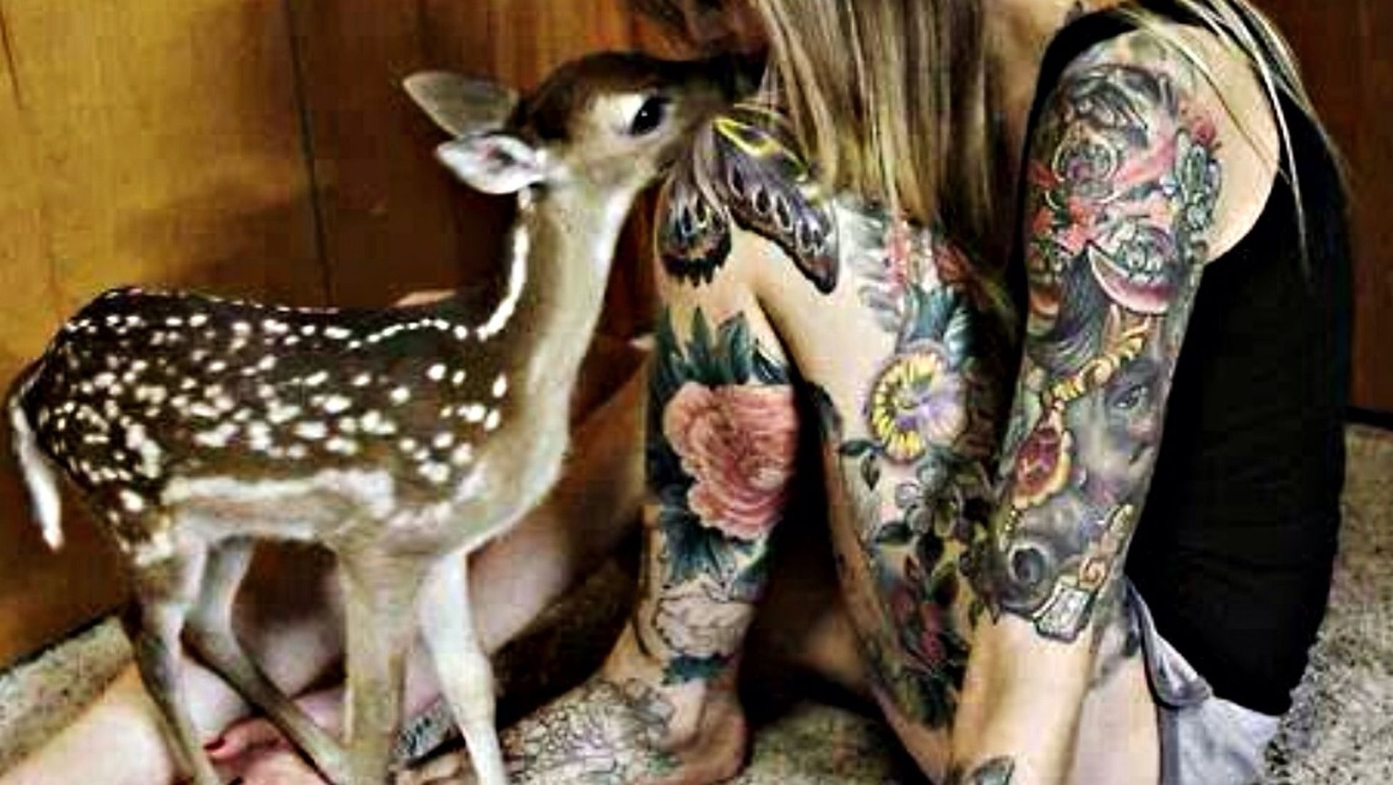 Tattoo Tattoos Tatoo Tattoomodels