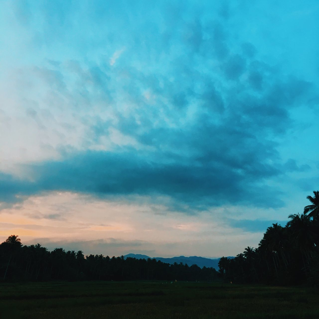silhouette, sky, beauty in nature, nature, cloud - sky, scenics, tranquility, tranquil scene, tree, landscape, field, sunset, no people, outdoors, day