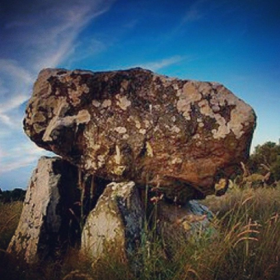 Cleenrath Dolmen Longford Ireland Wilderness Stones Stoneage Historic Irish Beautiful Scenery Countryside Flowers Trees Sunny Green Grass Bright Summer Early Walk Fields