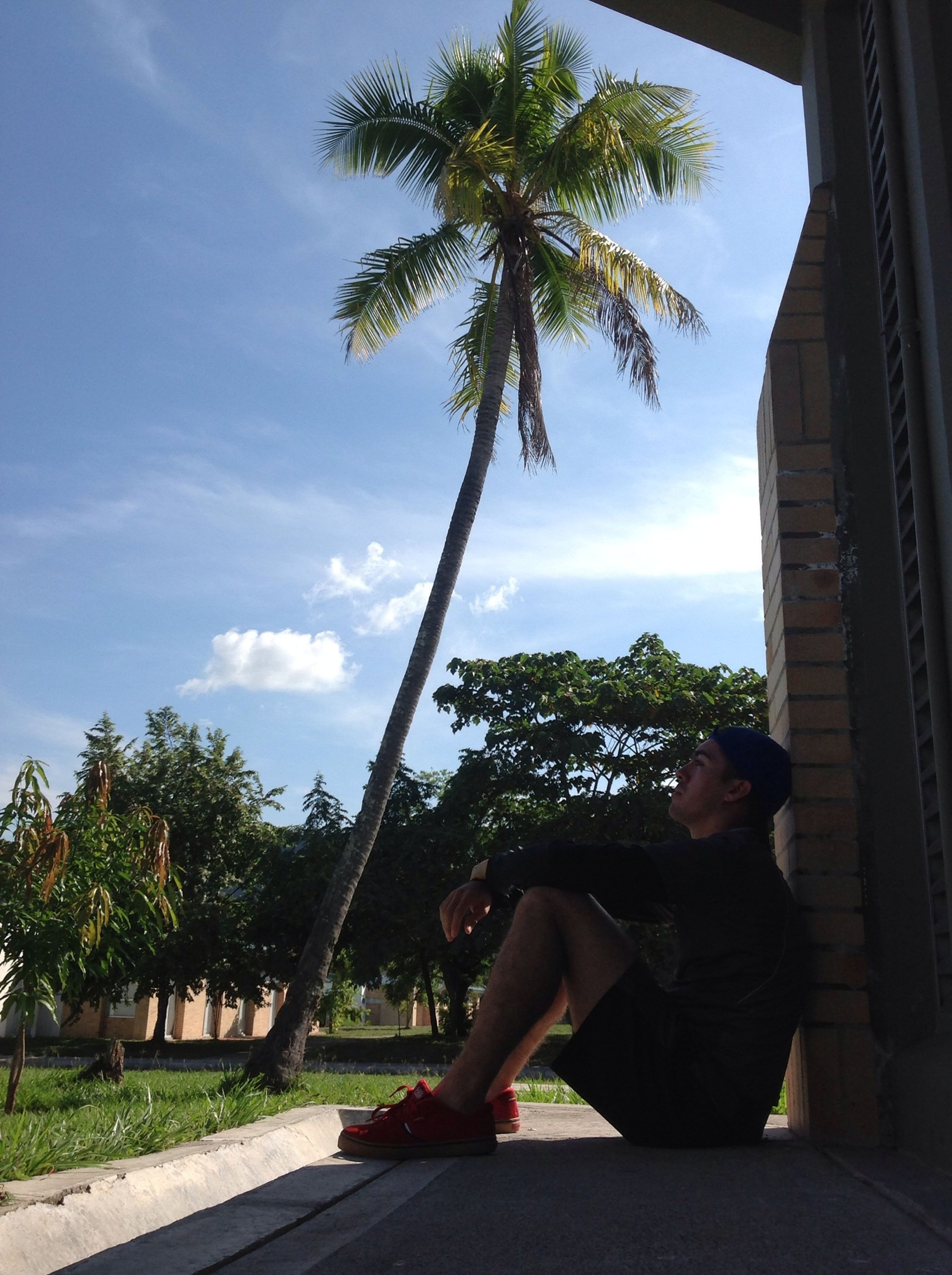 tree, lifestyles, leisure activity, sky, casual clothing, young adult, full length, relaxation, young women, person, sitting, palm tree, built structure, standing, day, rear view, architecture