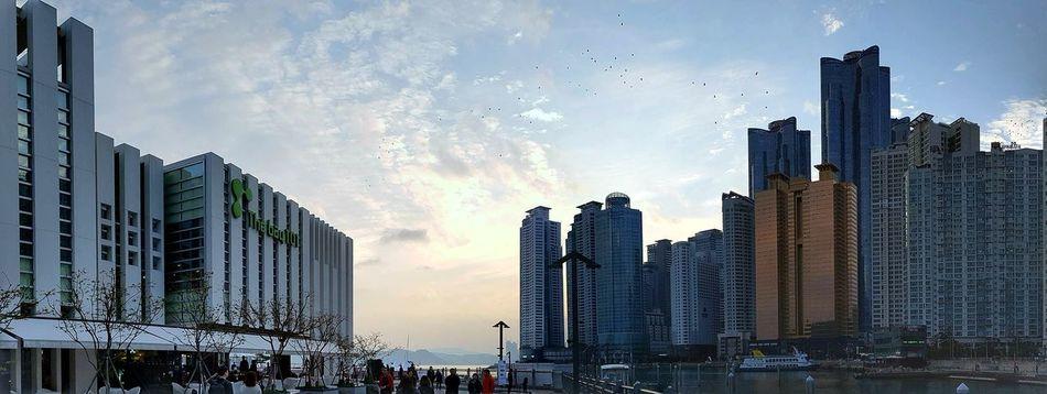 해운대 Skyscraper Sky Cityscape Clear Sky Outdoors Day Blue Built Structure Building Exterior