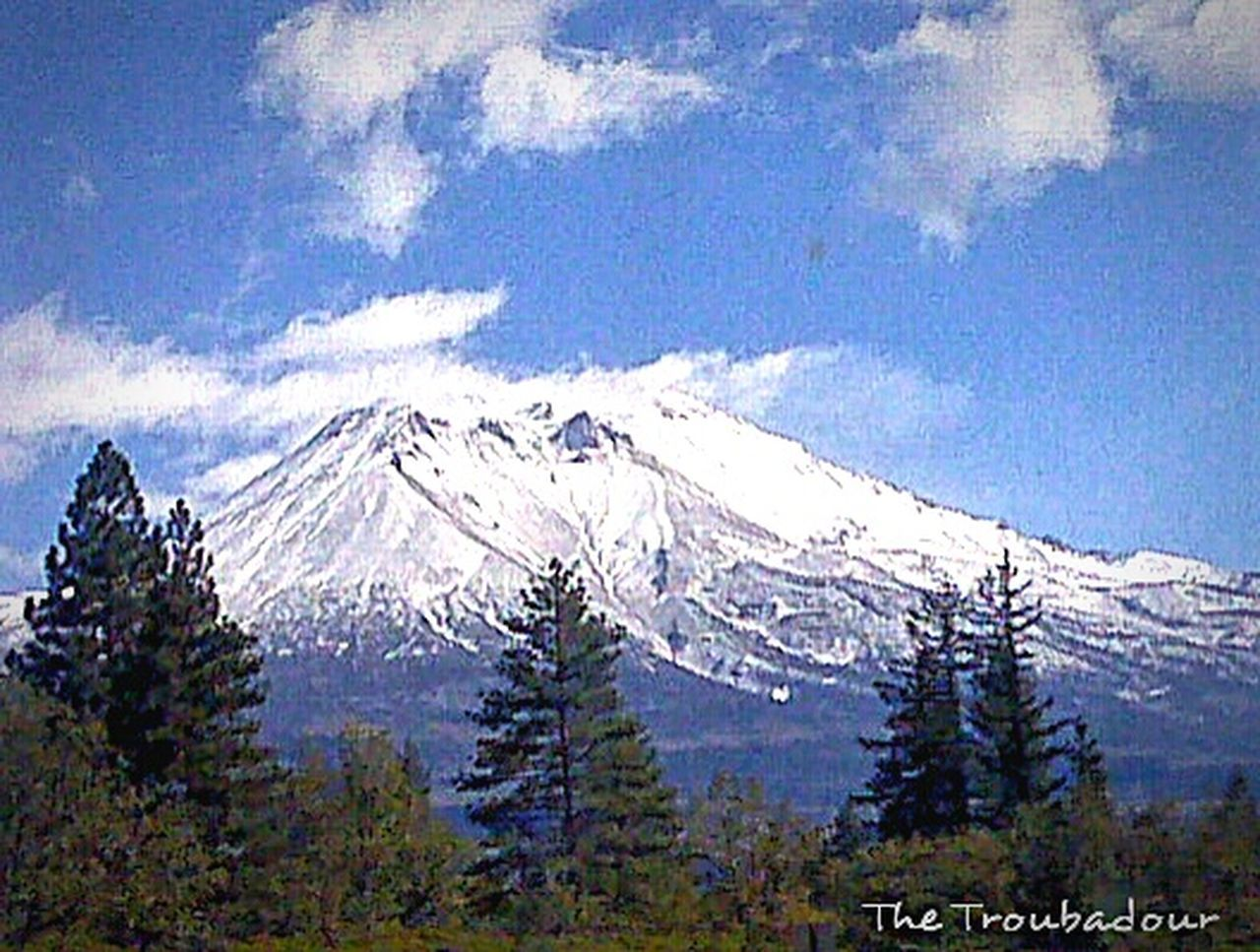 """Hidden Gems  """"Mount Shasta, potentially active volcano, and the fith highest peak in California"""" 🌋 Volcano Mountain Peak Nature Photography Nature_collection Nature's Diversities Trees And Nature No Need To Escape, Im In Wonderland! EyeEm Gallery Week On Eyeem not my First Eyeem Photo Mountain View Eye4photography  43 Golden Moments Best Eyeem Pics Eyeemphotography Through My Eyes EyeEm Best Shots Nature On Your Doorstep Tree Porn From My Point Of View Photo Of The Day in Mount Shasta, California"""