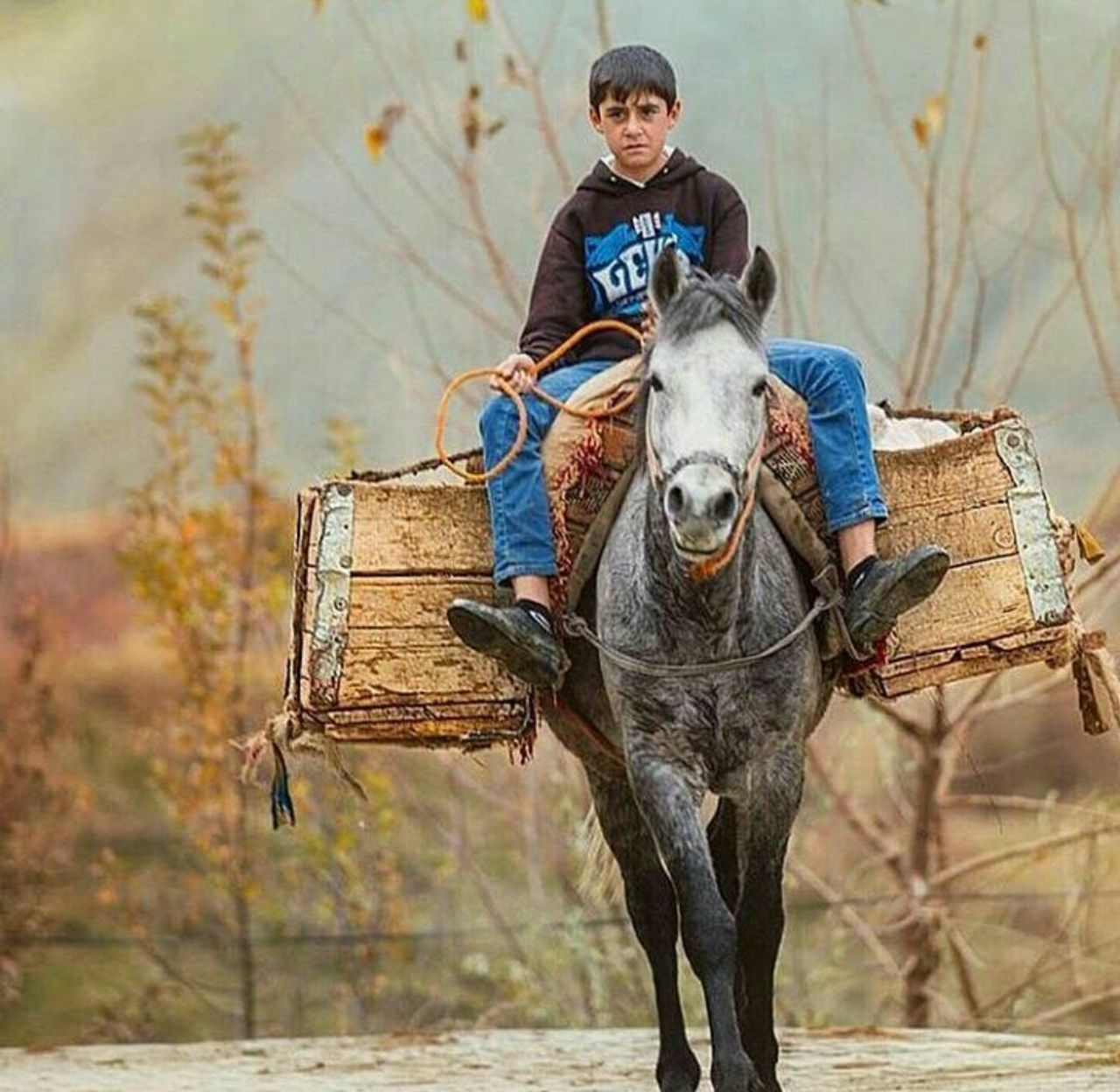 child, rural scene, agriculture, males, animal, people, one animal, riding, boys, outdoors, autumn, one person, farmer, full length, adult, day, grass, children only, portrait, nature, animal themes