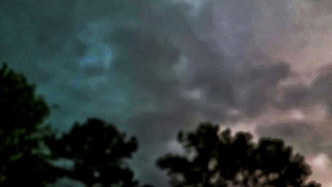 Lightning Lightning Behind Clouds Severe Thunderstorm Clouds Weather Photography Heavy Rain Thunderstorm Bad Weather Rain Raining Hard Rain Clouds Tree Line Landscape_photography Landscape Photography In Motion Not Always Blue Skies Not Always Sunshine Rain Rain Go Away Backlit Clouds Backlit Trees