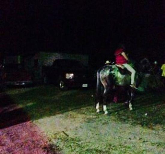 Aqui nonas en el caballo