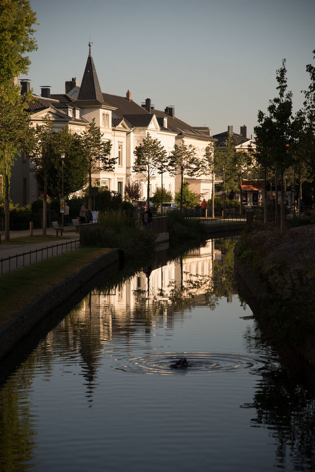 Am Wallgraben Channel Duck Hostorical Place Morning Light No People Outdoors Reflections In The Water Residential Building Residential District Rippled Water Trees Water