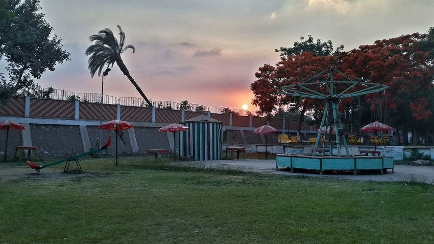 Abandoned playground. (T_T) Playground Playground Equipment Playground Structure Playgrounds Playgroundadventure Playground At Night Playful Abandoned Abandoned Places Dusk Dusk Colours Dusk Sky Dusk. Garden Garden Photography Trees Trees And Sky Red Leaves Red Tree Broken Palm Tree Palm Tree Palm Trees Finding New Frontiers