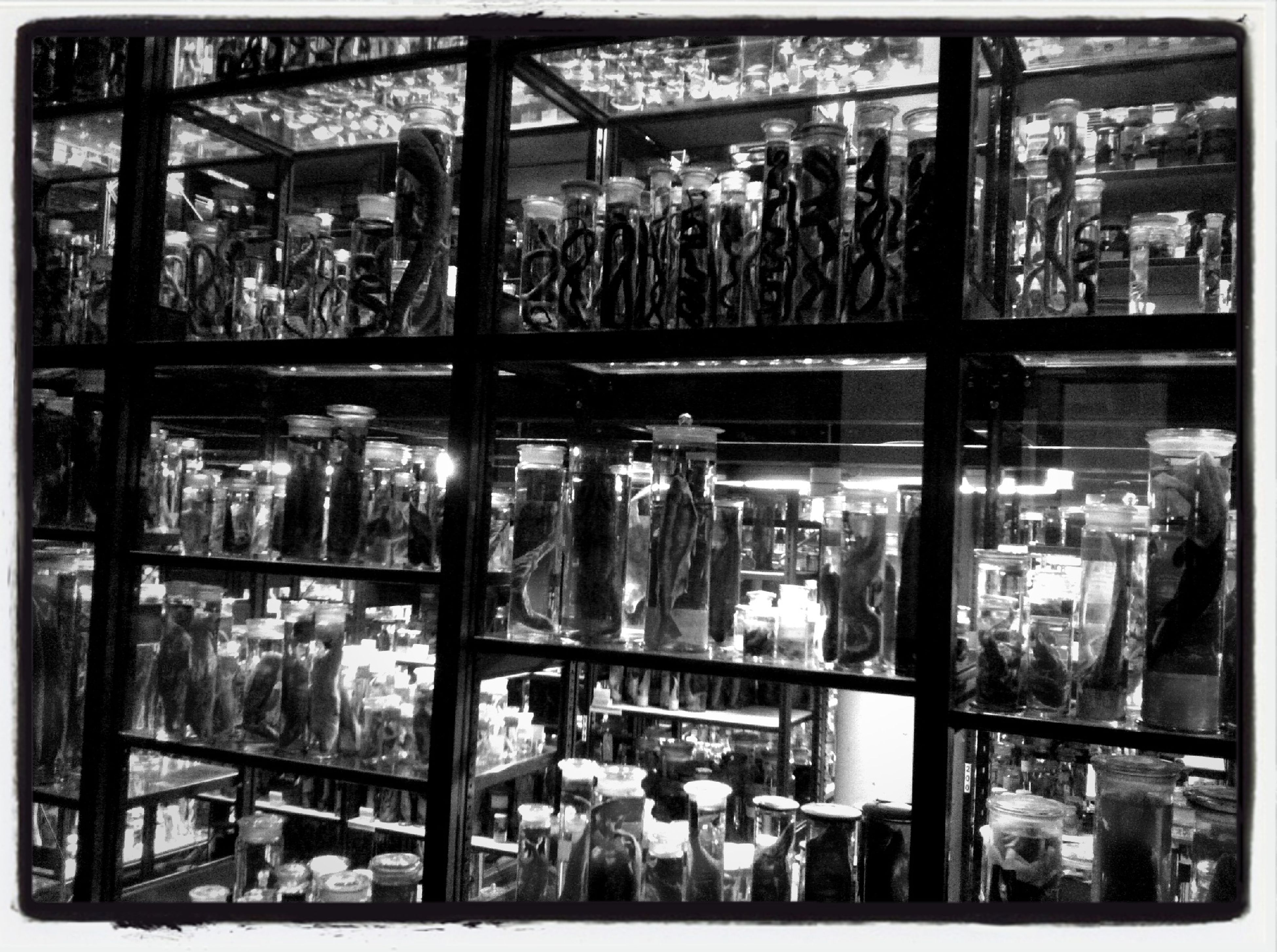 retail, indoors, transfer print, store, for sale, abundance, market, shopping, large group of objects, choice, variation, market stall, shelf, consumerism, arrangement, display, shop, collection, glass - material