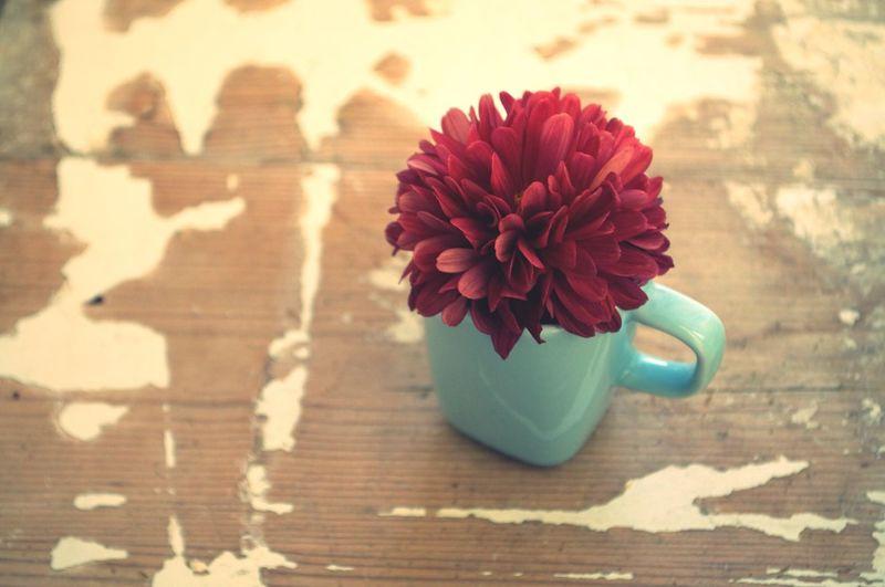 そして… 花 菊 カップ アンティーク シャビー シャビーシック