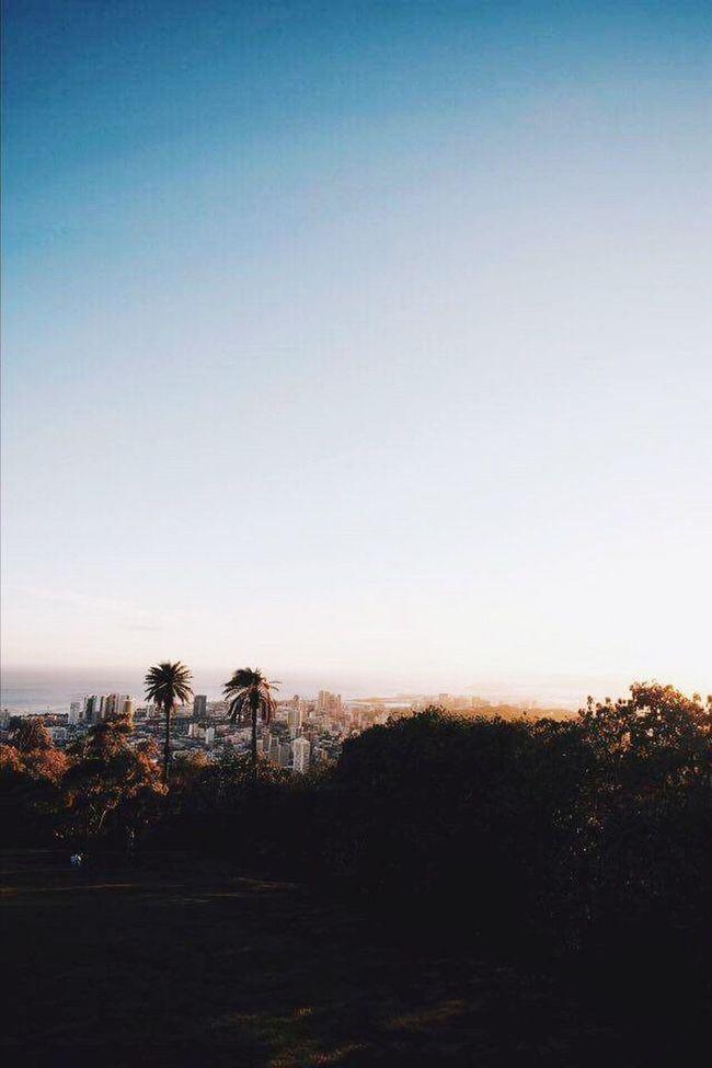 L.A. California Lovecity  🌆☀️🌴💕