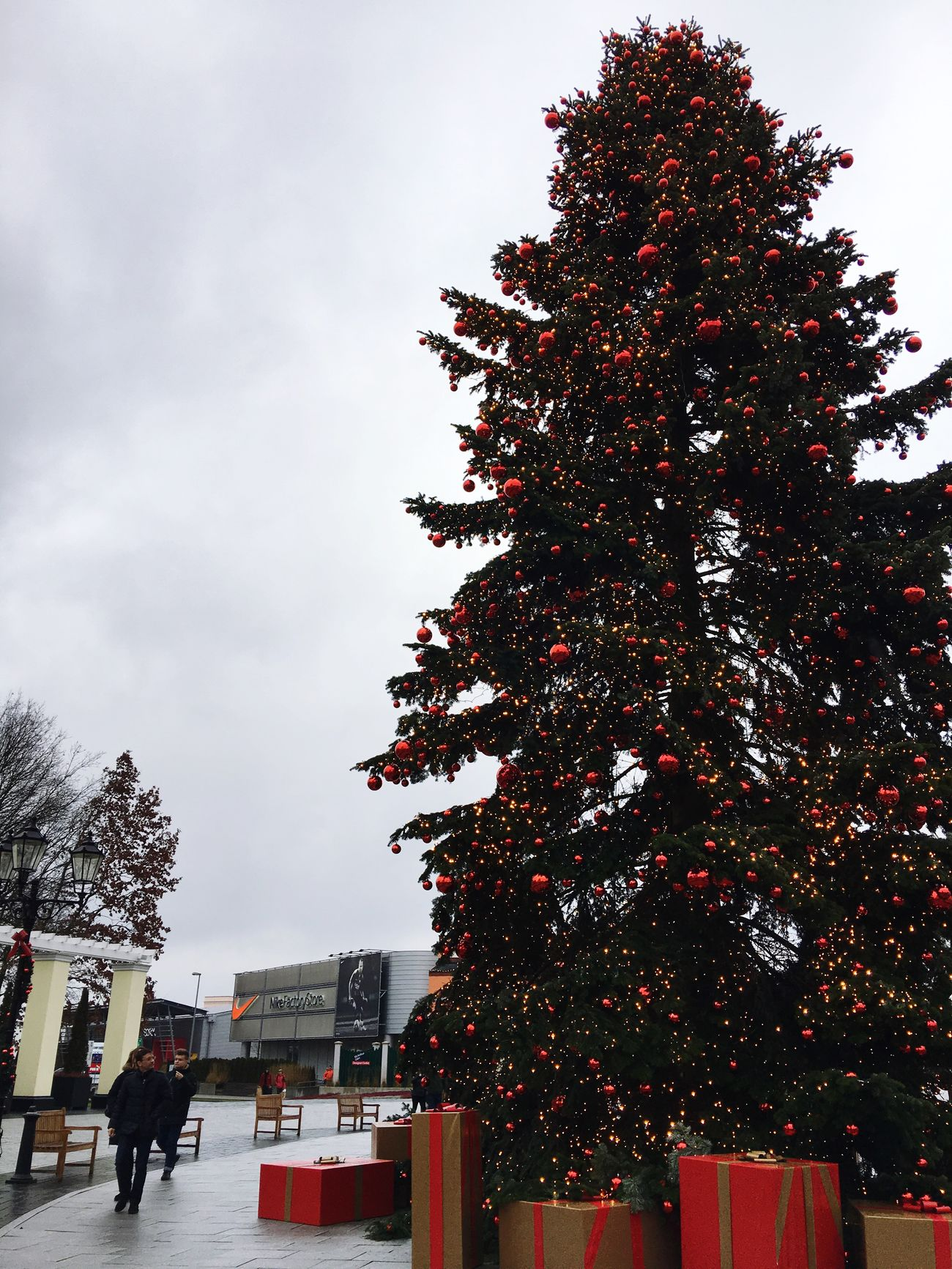 Tree Christmas Tree Parndorf Austria ❤ Cold Day