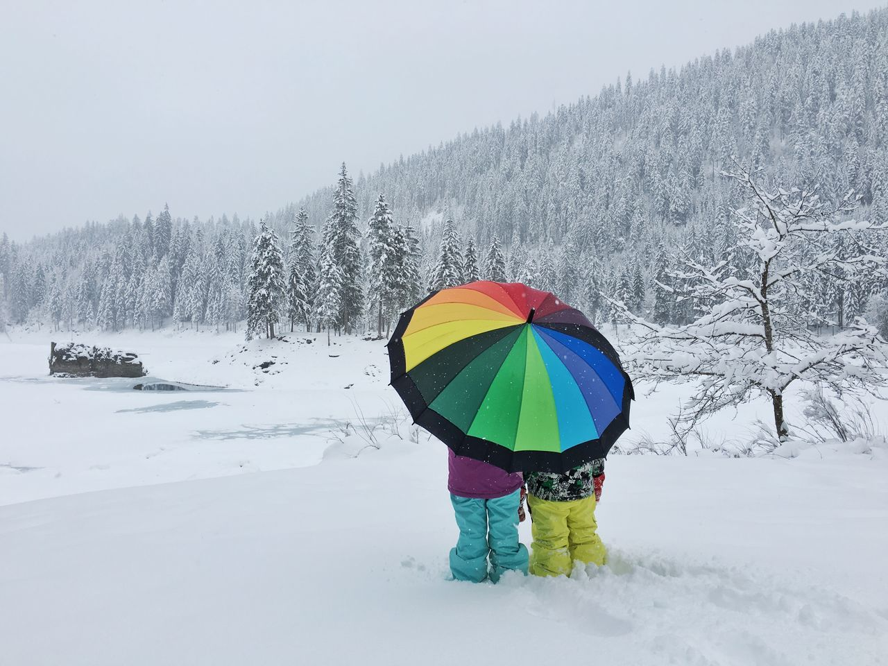 Beautiful stock photos of regenbogen, Beauty In Nature, Blizzard, Cold Temperature, Colorful