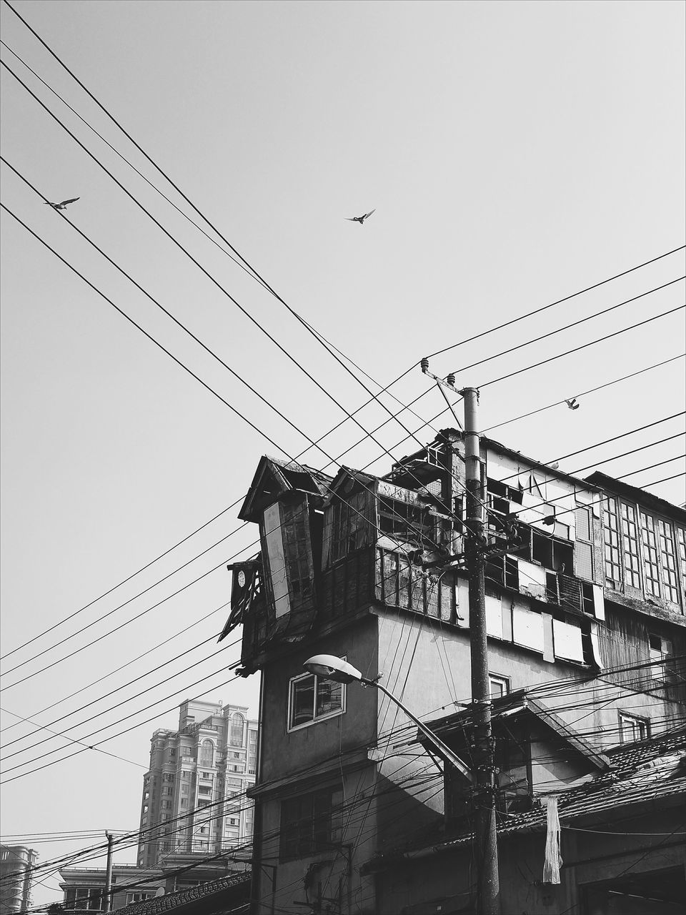 cable, power line, connection, power supply, low angle view, electricity pylon, architecture, electricity, built structure, clear sky, building exterior, sky, no people, day, bird, outdoors, telephone line, animal themes, technology