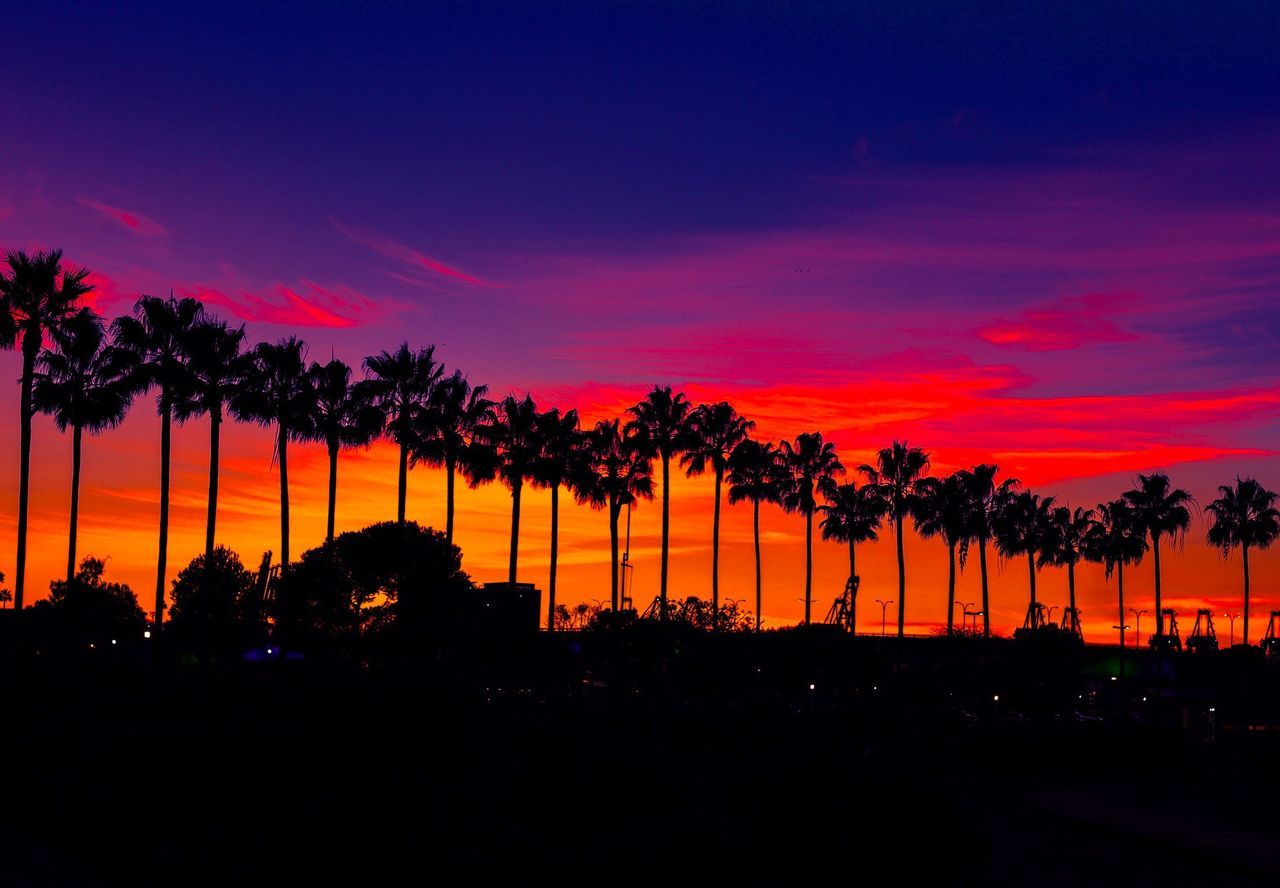 till next time Sunset Silhouette Beauty In Nature Sky Scenics Outdoors