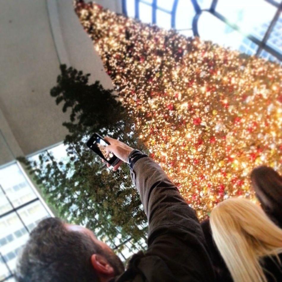 Willistowerchristmastree Willistower Christmastree Chicago xmastree treelightingceremony
