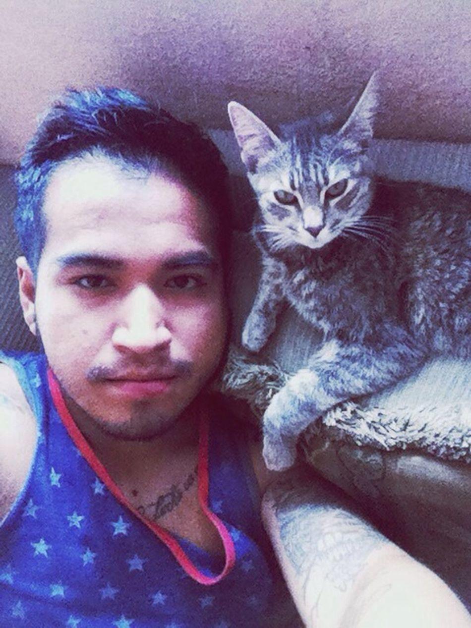 Thas't Me Handsome Man Beard And Tattoo Animals Cat♡ Miauuu I Love My Cat Rosa Beautiful People