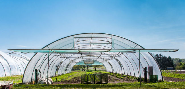 Agriculture Blue Built Structure Day Empty Greenhouse Modern Nature No People Outdoors Sky Tranquility Envision The Future The Architect - 2016 EyeEm Awards