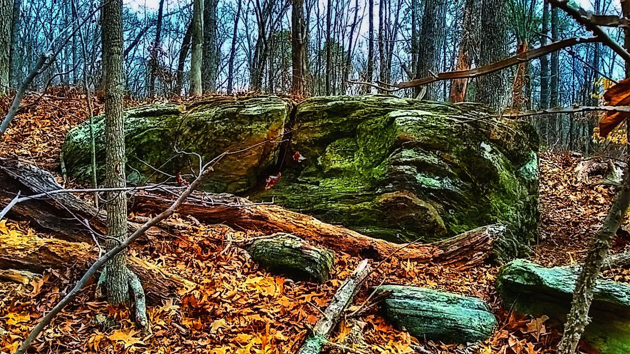 Nature Green Color Landscape_Collection Outdoors Beauty In Nature Walkin Around Landscape Hikingphotography Nature_collection Landscape_collection EyeEmNatureLover Little Kennesaw Mountain Colors Of Nature Power In Nature Woodland Walk Enjoying The View Rock Formations Sky Trail EmmieC