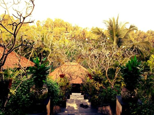 resort at Ubud Hanging Garden by meyskah