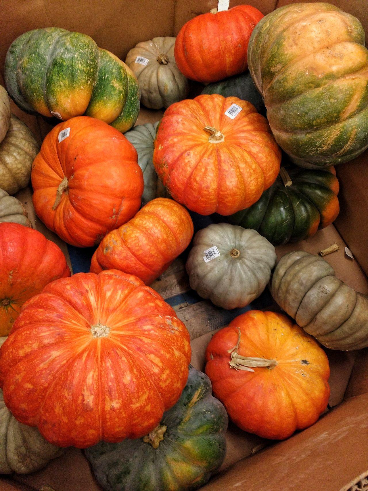 Strange Pumpkins. Pumpkins Display Bin Grocery Store Walmart Halloween