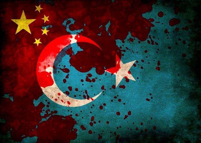 DoğuTürkistan StopTerorisminChina Freedomforeastturkestan